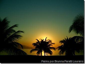 Palms por Brunna Peretti Loureiro